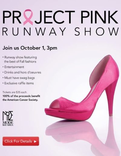 Project Pink Flyer